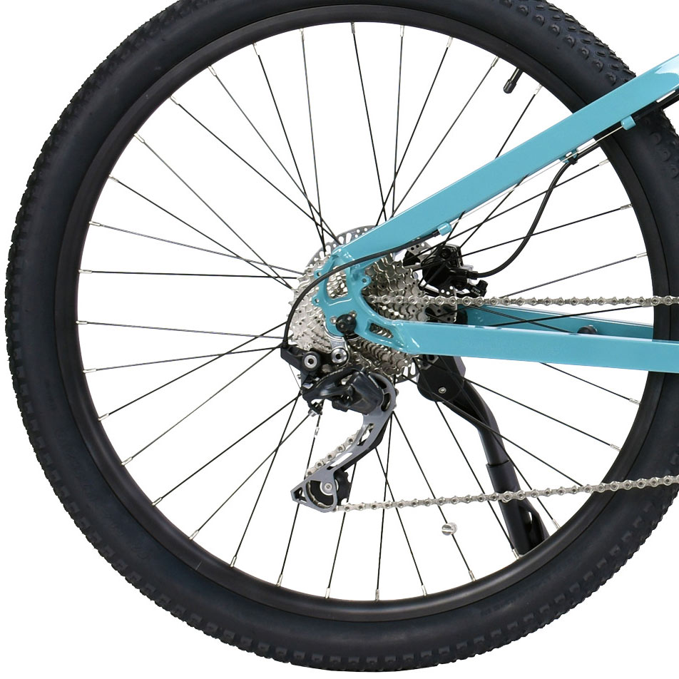 Keego E-Bike Back Wheel