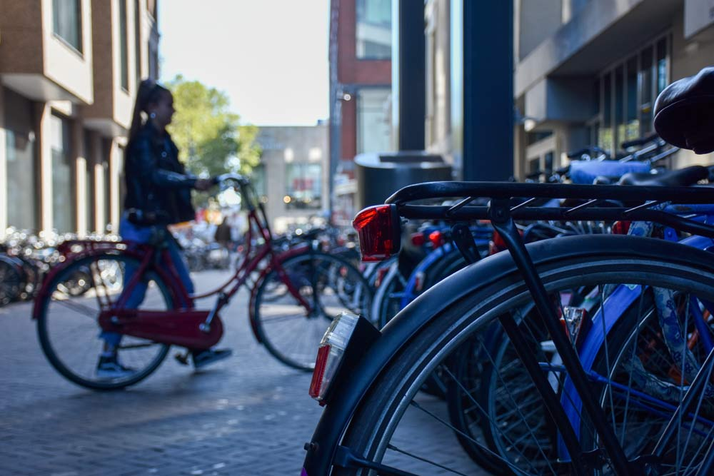 Take The Bike, Prolong Yours AND Others' Lives