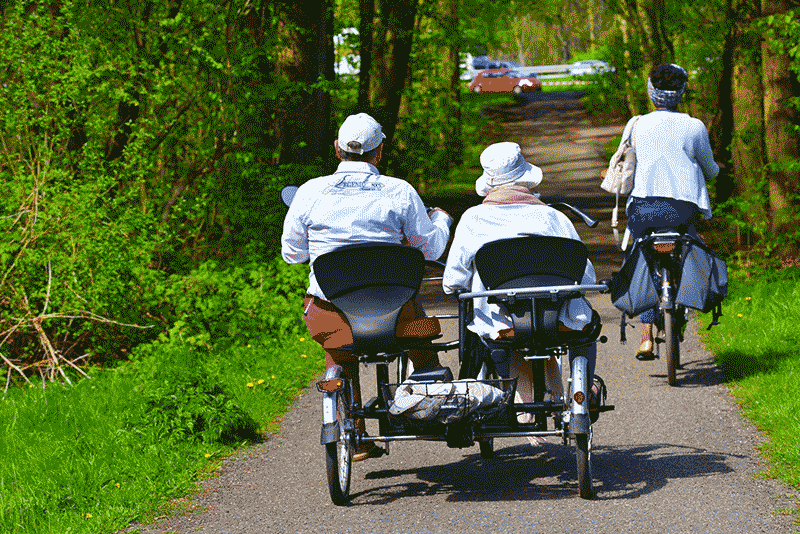 elderly couple biking on a pleasant park pathway, using pedal assist to propel them forward comfortably